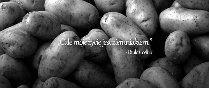 Powiedzmy, że ziemniakiLet's say potatoes
